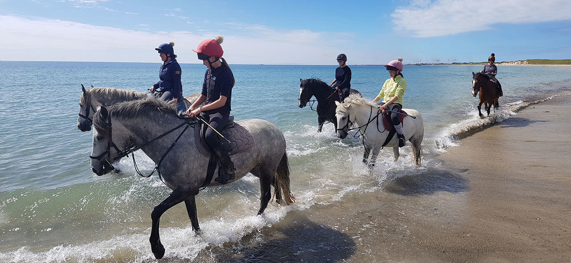 Horses and riders on beach trek Wexford Ireland