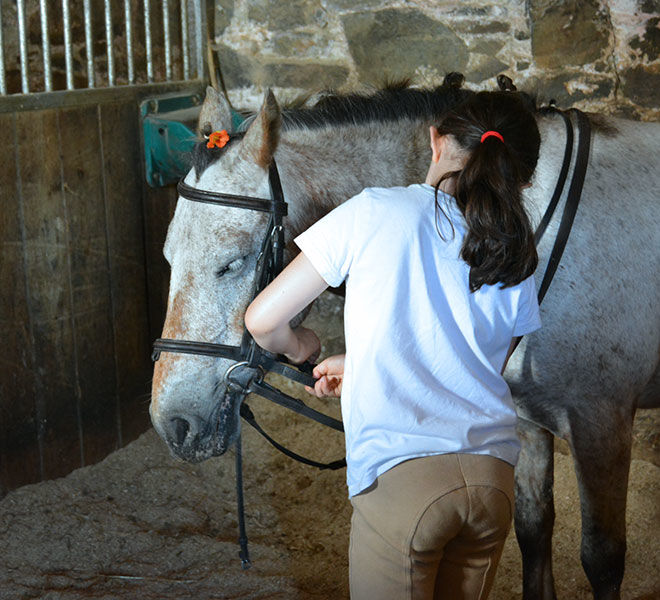 Pony-camp-hazelwood-stables-10