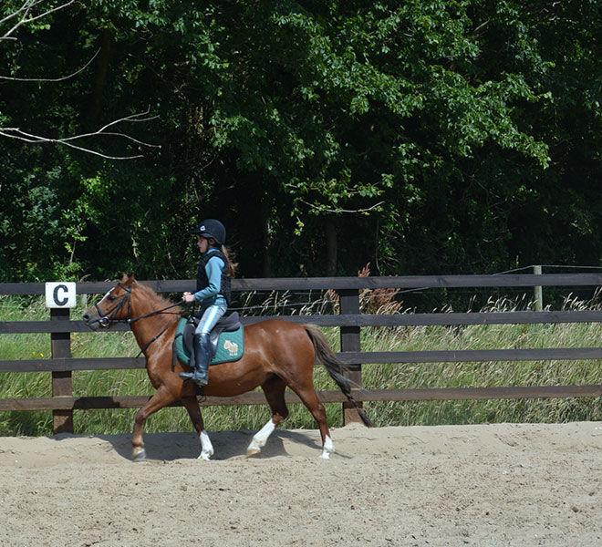 Pony-camp-hazelwood-stables-12