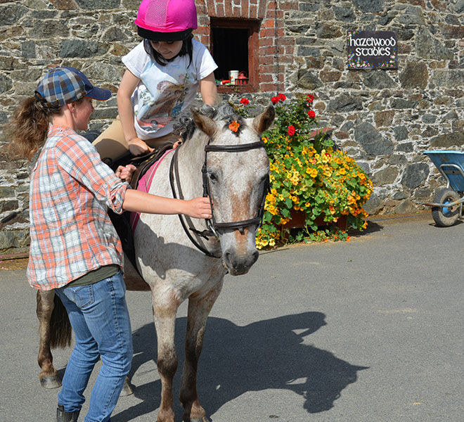 horse riding lesson for kids