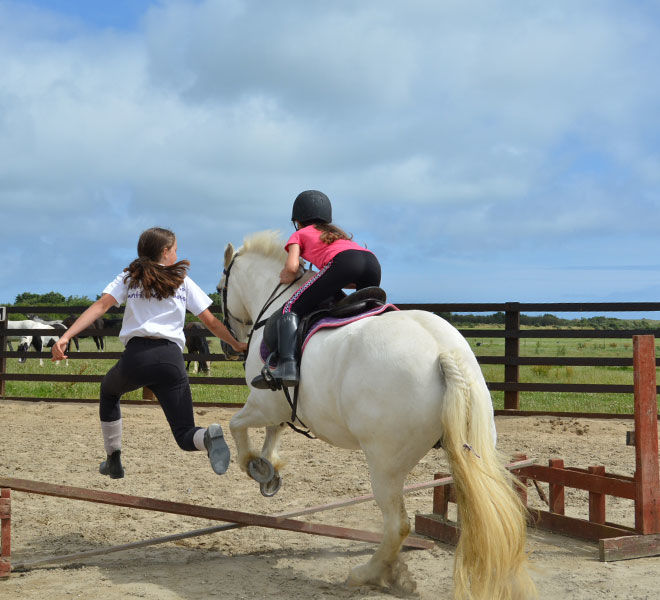riding lesson - jumping