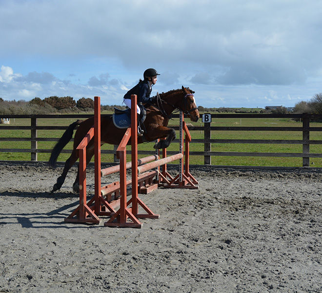 horse riding - jumping lesson