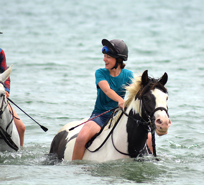 swimming-horses-hazelwood-stables-5